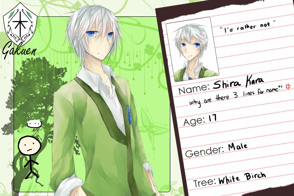 KG App revamp: Shira by miinji