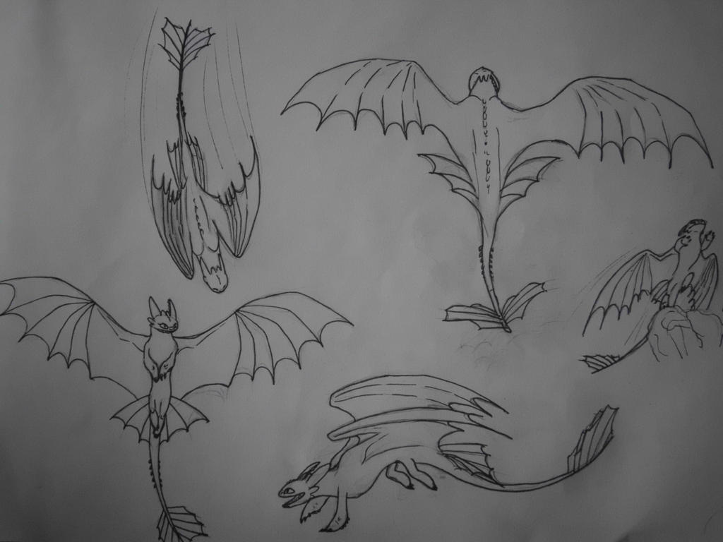 Night Fury flying sketches by KanpekiNaSekai on DeviantArt