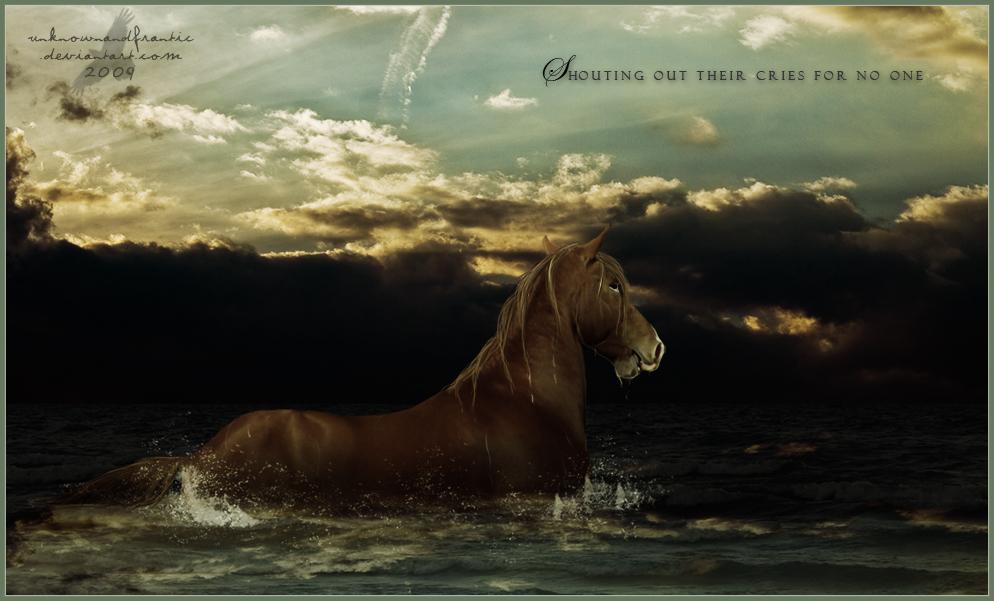 ^ Twilightstars ^ horses The_Thirteenth_Horse_by_Unknownandfrantic