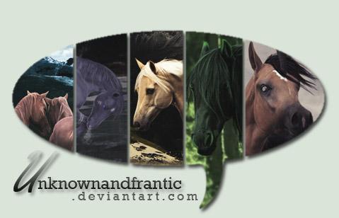 Unknownandfrantic's Profile Picture