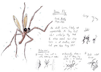 Old Concept Art 8 (Drain Fly) by TitaniumGrunt7