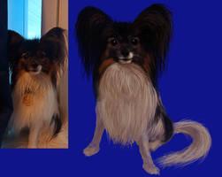 My dog #1 - Watson