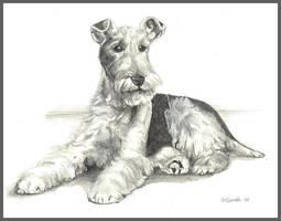 Fox Terrier by d3javu3