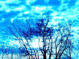 Blueness by AliciaxMarie