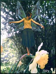 Fairy ... by DarkMoi