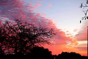 sky sunset VIII by glad2626