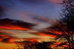 sunrise 63
