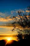 sunrise 66