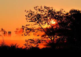 sunrise 190 by glad2626