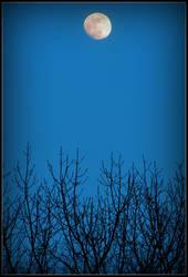 Blue Moon by Ryser915