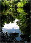 Muddy River Reflection