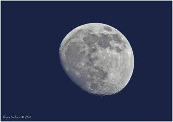 Winter Moon by Ryser915