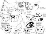 Cat Studies 1 - 1 by radstylix