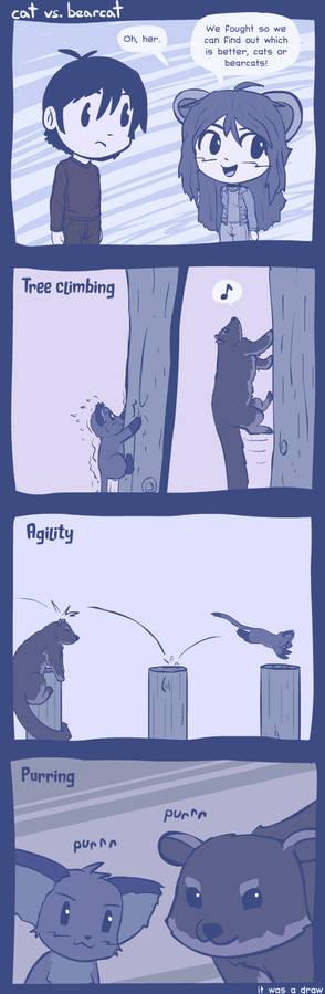 cat vs bearcat