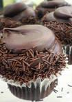 Fudgey Goodness Cupcake