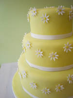 Daisy Wedding Cake by Heidilu22