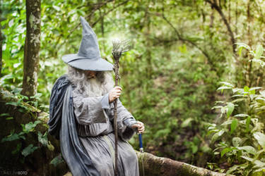 Gandalf the Grey awaits by CisjPhoto