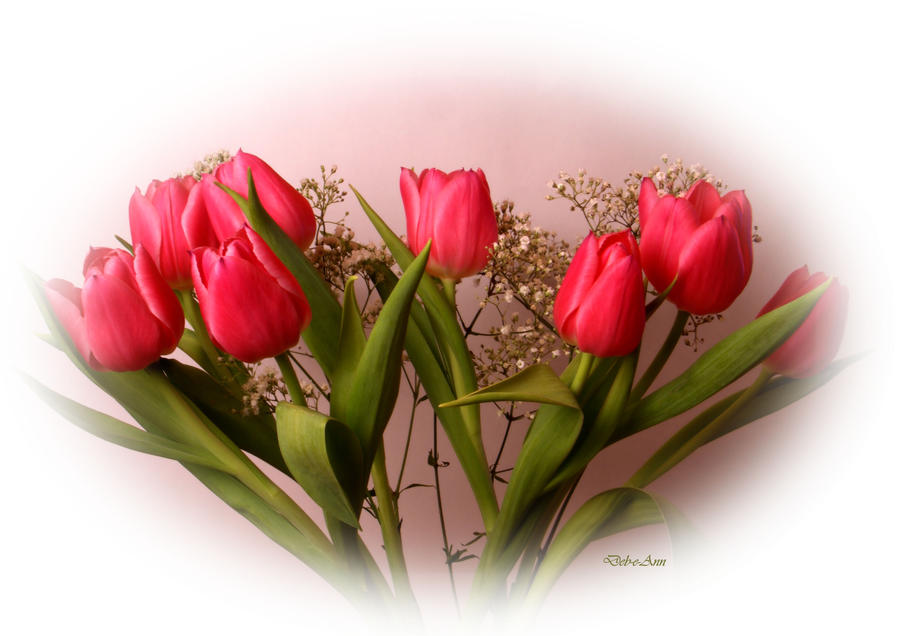 Just a bunch of tulips by Deb-e-ann