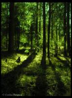 Fairytale of Innertavle by Lomil-Gathiel