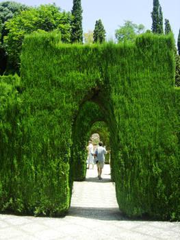 Hedge doors
