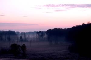 Early Morning Fog by El-Sharra