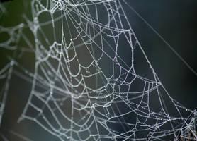 Web 2 by El-Sharra