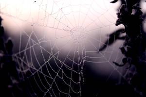 Web 3 by El-Sharra