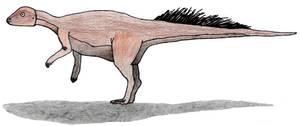 Micropachycephalosaurus old by ijreid
