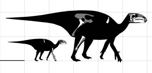 Dawn Lambeosaurus and Baby Dawn Lambeosaurus by ijreid