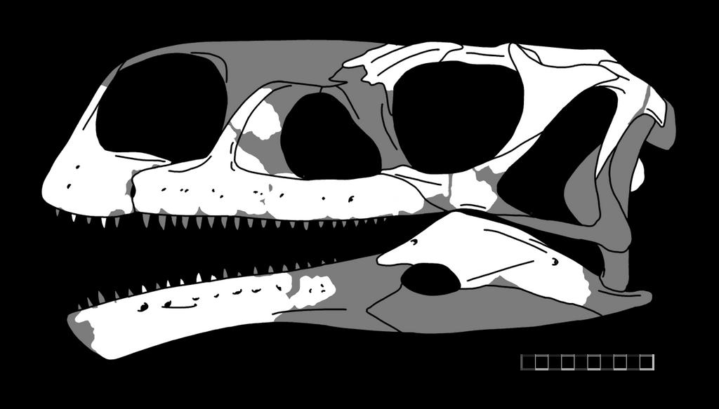Aardonyx by ijreid