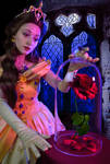 Belle - Beauty and the Beast - Truly enchanted