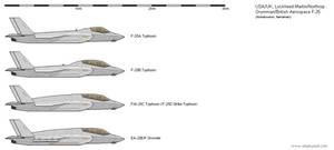 Lockheed Martin/Northrop Grumman/BAe F-25
