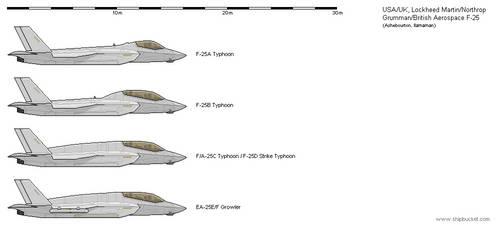 Lockheed Martin/Northrop Grumman/BAe F-25 by dave-llamaman