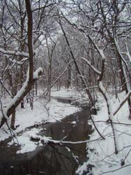 Hammel Woods