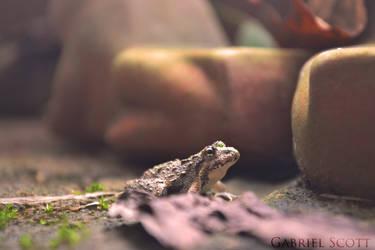 Little Man by DragonBreath75