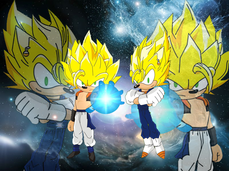 the_hedgehogs_fusions_by_dairon11-d3b5yj3.jpg