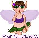 Pixie Wildflower gift by Arianstar