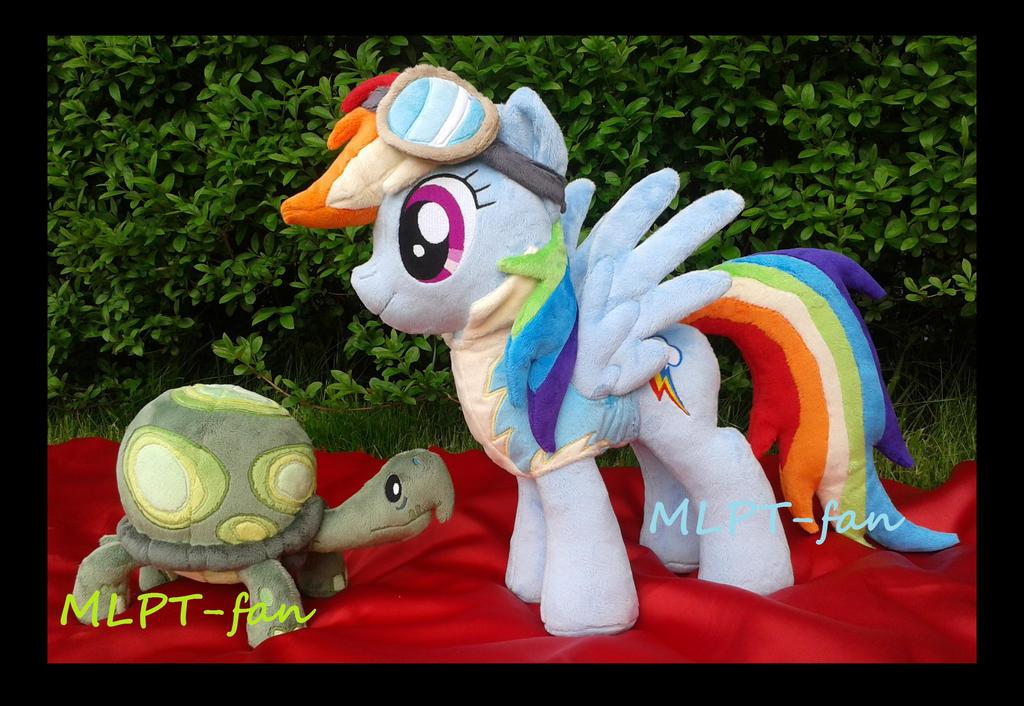 Wonderbolt Academy Rainbow Dash and pet Tank by MLPT-fan