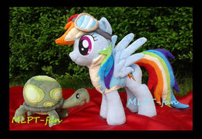 Wonderbolt Academy Rainbow Dash and pet Tank by calusariAC