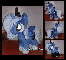 filly Luna with shoes and socks by calusariAC