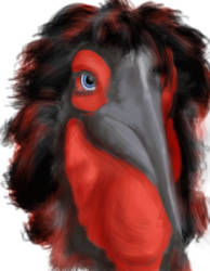 hornbill monster by swanblood