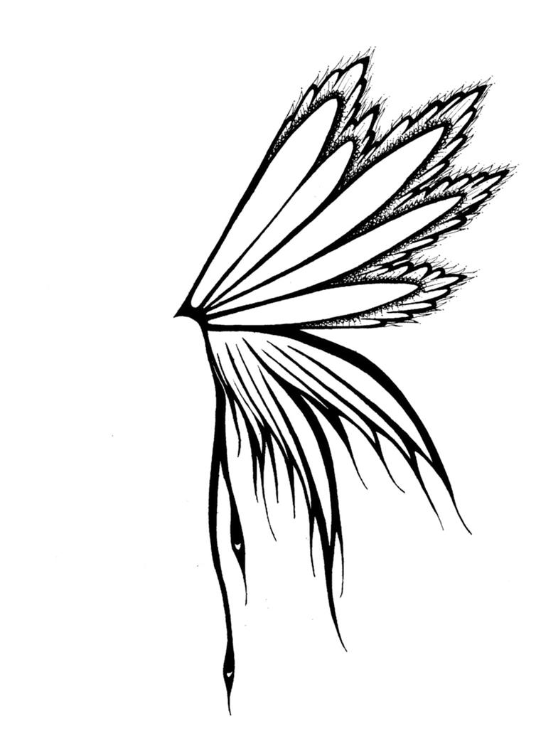 Uncategorized Butterfly Wings Drawing butterfly wing by hanaki sama on deviantart sama