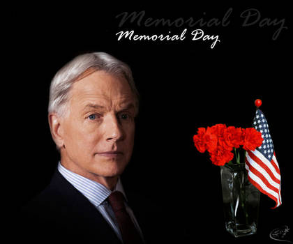 Mark Harmon - Memorial Day 2019 by silverfox2159