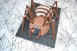 Tarantula Spider birthday cake by hartifax