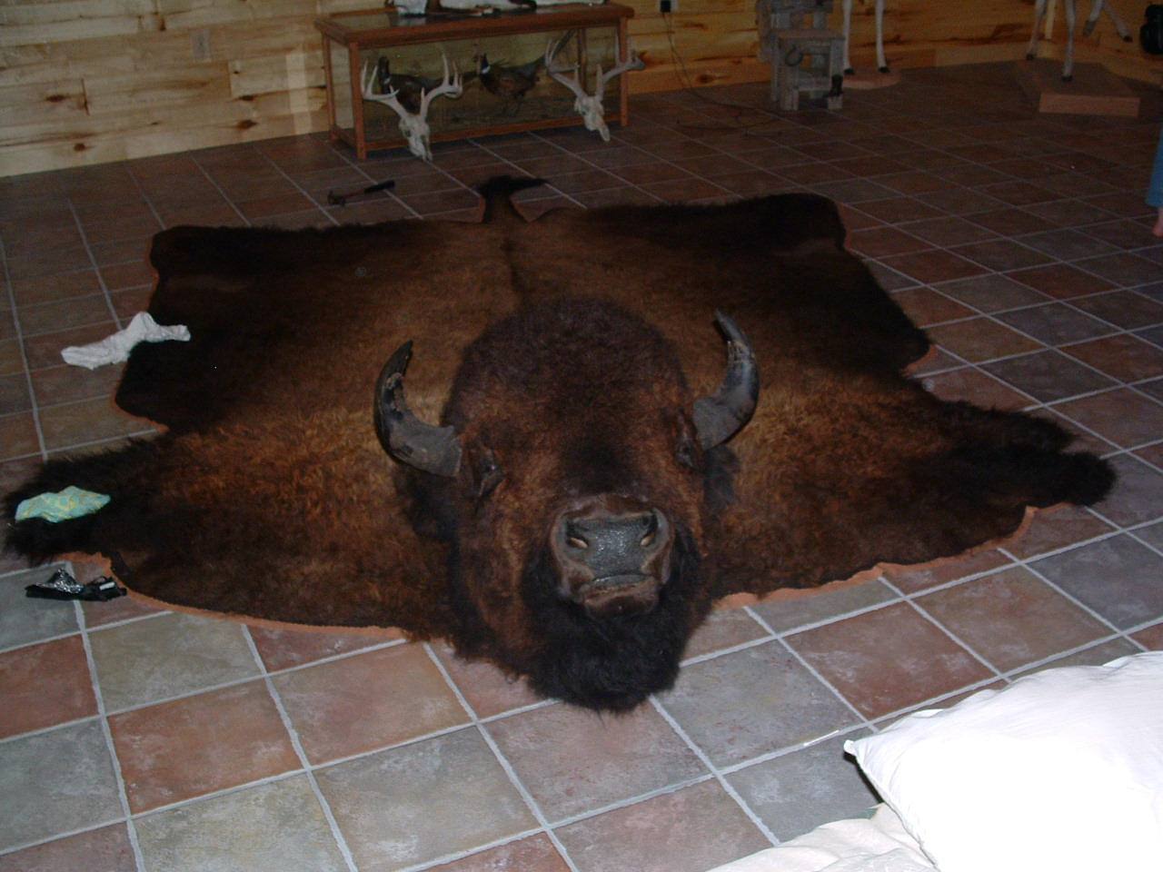 Bison Rug Home Decor