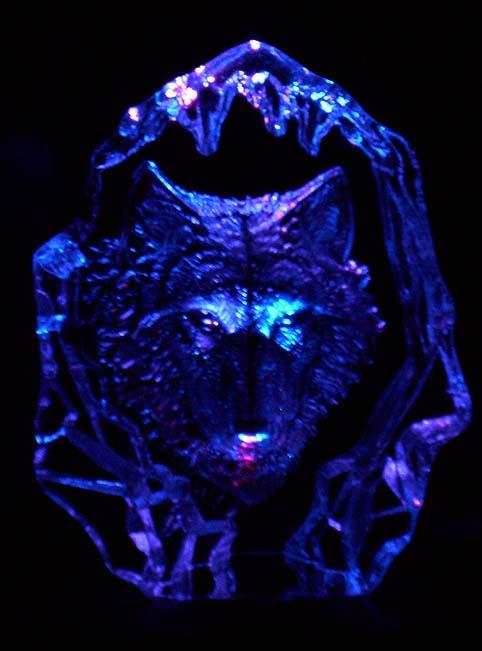 + Ice Wolf + by SpiritWolfen