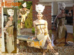 Nala Cosplay - collage