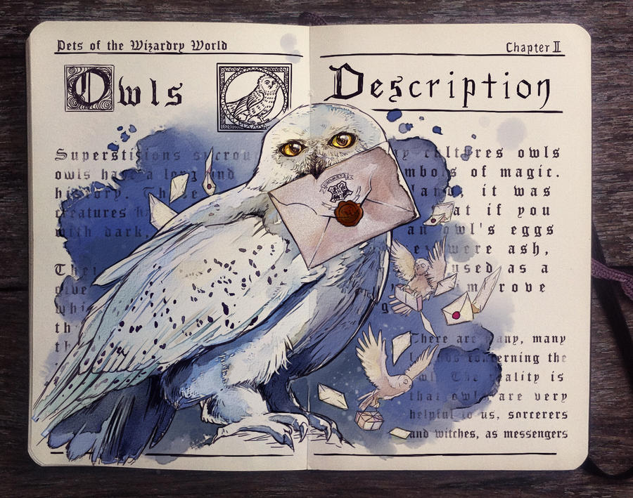 .: Pets of the Wizarding World: Owls