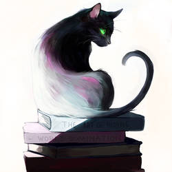 What a cat reads