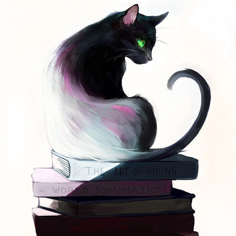 What a cat reads by Picolo-kun
